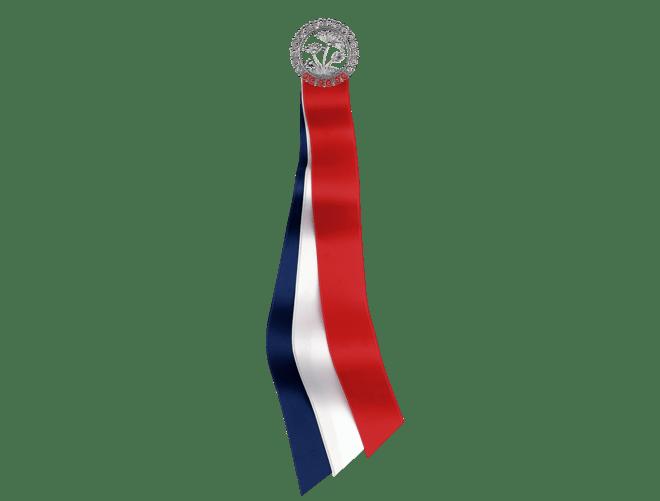 17.mai-sløyfe Tromsø, oksidert